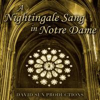 A Nightingale Sang in Notre Dame packshot