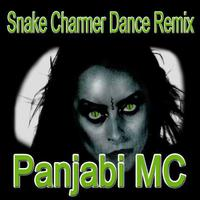 Snake Charmer (Dance Remix) - Single packshot
