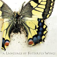 A Language of Butterfly Wings packshot
