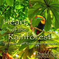 Heart of the Rainforest packshot