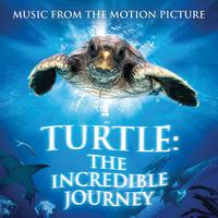 Turtle: The Incredible Journey - Music from the Motion Picture packshot