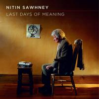Last Days of Meaning packshot