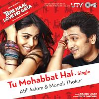 Tu Mohabbat Hai - Single packshot