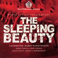 The Sleeping Beauty packshot