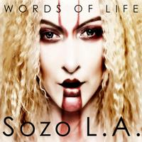 Words of Life packshot