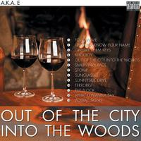 Out Of The City Into The Woods packshot